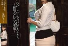 星野娜美(星野ナミ)个人最好看番号【SNIS-204】剧情展示